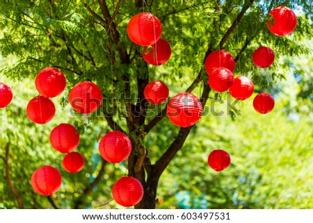 Chinese new year lanterns On the tree