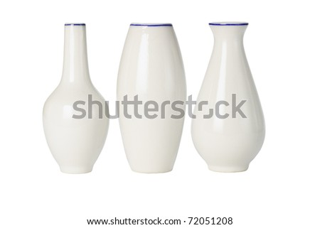 Chinese porcelain vases of various shapes on white background