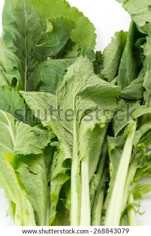 Chinese Spinach on white background