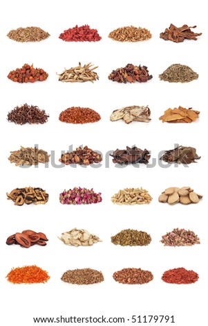 Chinese traditional medicinal herb collection, isolated over white background. - stock photo