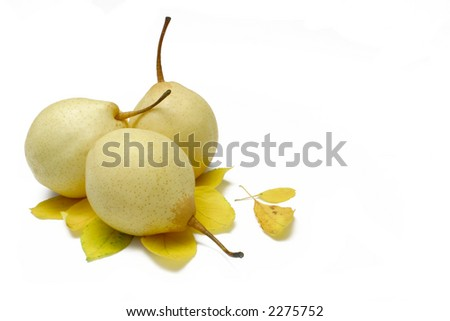 "Chinese White Pears or Ya Pears with ""turning"" leaves, isolated on white"