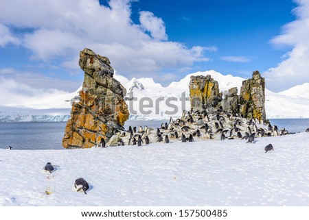 Chinstrap Penguins (Pygoscelis antarctica) and a rock in Half Moon Island of the South Shetland Islands - stock photo