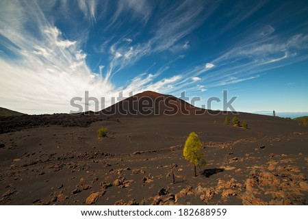 Chinyero volcano.Canary Islands. - stock photo