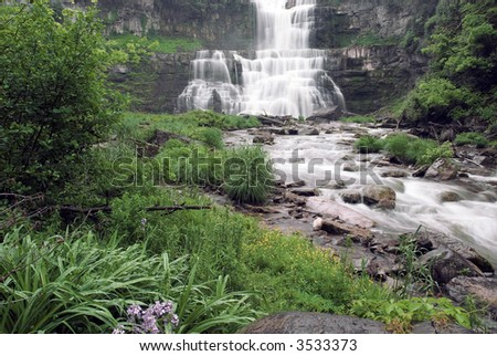 Chittenango Falls in central New York state. This beautiful waterfall tumbles across many rock ledges creating this beautiul scene that includes some wild flowers in the foreground. - stock photo