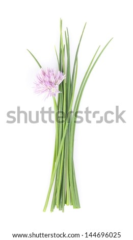 Chive on white background.