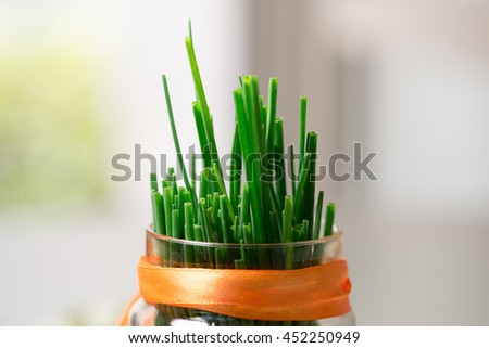 Chives: closeup in a glass jar - stock photo