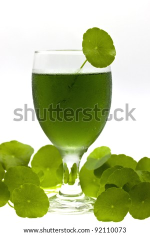 Chlorophyll drink - stock photo