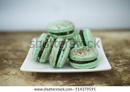 Choc mint macaroons on a square plate - stock photo