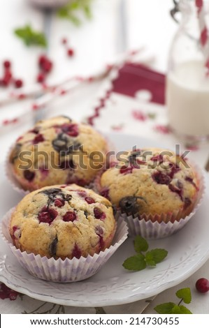 Chocolate and cranberries muffins with a bottle of milk - stock photo