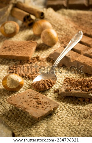 chocolate and haselnut with cocoa on a canvas background - stock photo