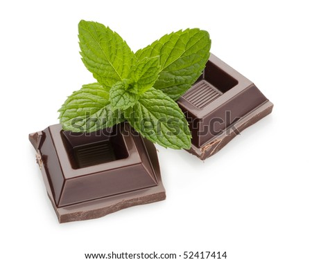 Chocolate and mint - stock photo
