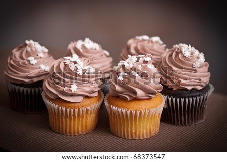 chocolate and vanilla cupcakes - stock photo