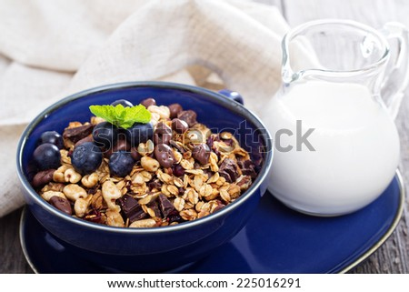 Chocolate breakfast granola with milk and blueberries - stock photo