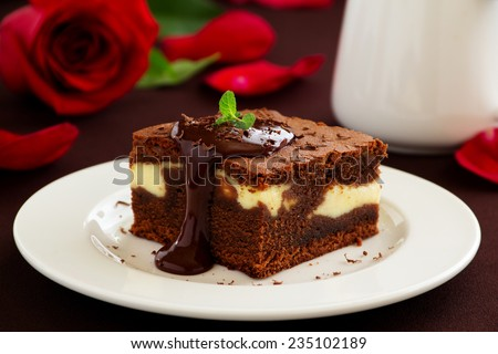 Chocolate brownie with cheese filling and chocolate sauce. - stock photo