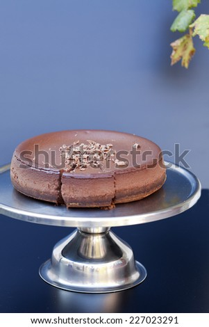 chocolate cake on tray with leaf decor on dark background