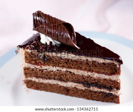 chocolate cake slice on white plate - stock photo
