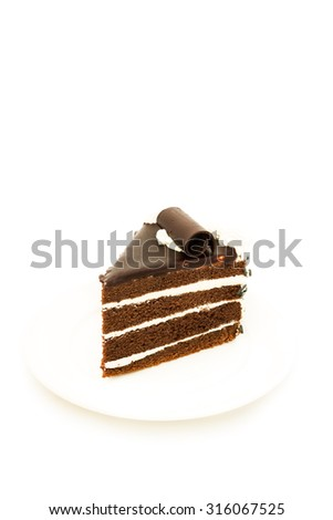 Chocolate cake with chocolate cream on white background