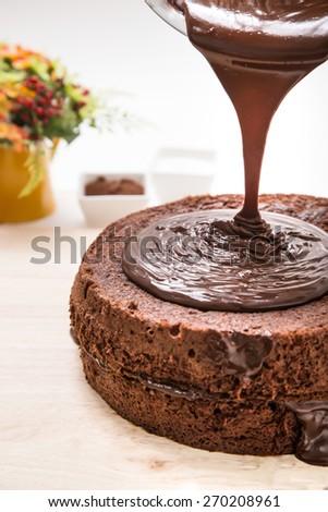 chocolate cake with chocolate sauce - stock photo