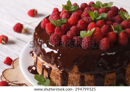 Chocolate cake with fresh raspberries close-up on a plate. Horizontal