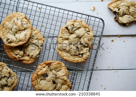 Chocolate Chip Cookies Fresh from Oven - stock photo
