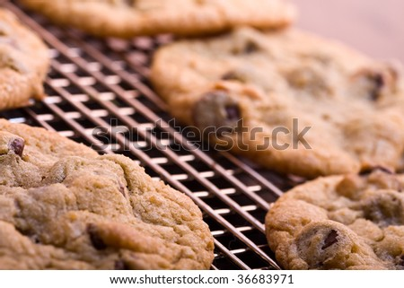 chocolate chip cookies on a cooling rack fresh out of the oven