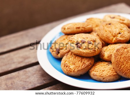 Chocolate chip cookies on a plate ( shallow dof)