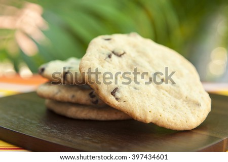 Chocolate chip cookies outdoors with palm trees