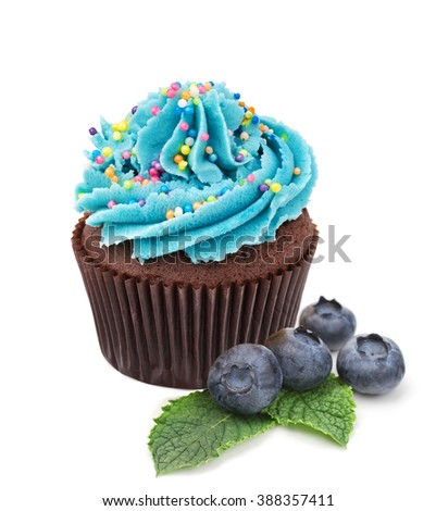 chocolate cupcake with fresh blueberry isolated on white - stock photo