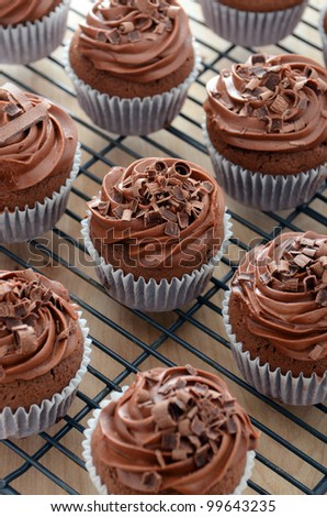 Chocolate cupcakes with frosting and garnish - stock photo