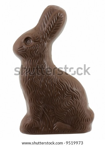 Chocolate easter bunny - stock photo