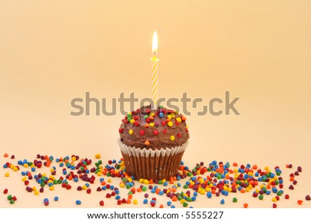 Chocolate frosted cupcake with single candle, and colorful sprinkles.
