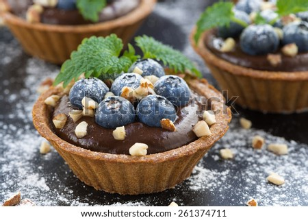 chocolate mousse with fresh blueberries and mint in tartlets, close-up - stock photo