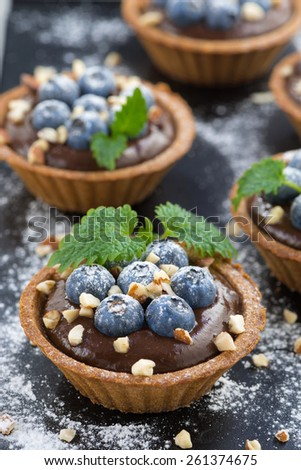 chocolate mousse with fresh blueberries and mint in tartlets, vertical, top view - stock photo