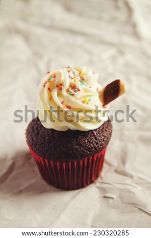 Chocolate sundae cupcake with colorful sprinkles and clear space - stock photo