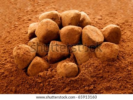 chocolate truffle in cocoa - stock photo