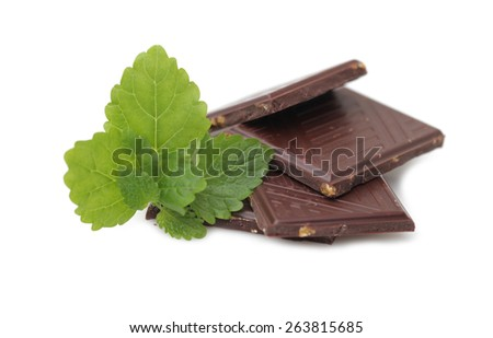 Chocolate with mint - stock photo
