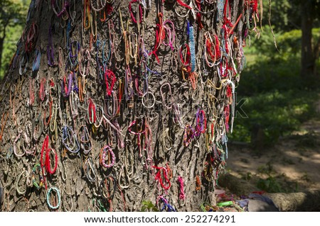 CHOENG EK, CAMBODIA - NOV 17 - The killing tree which the Khmer Rouge threw the baby on in Choeung Ek, Cambodia on November 17 2014. They killed baby using the tree in order to save bullets. - stock photo