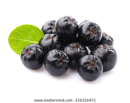 Chokeberry with leaf - stock photo