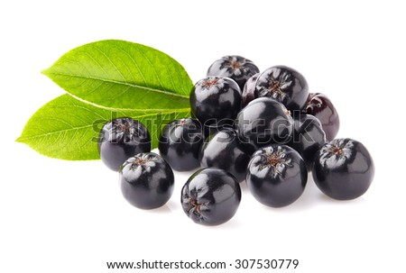 Chokeberry with leaves - stock photo