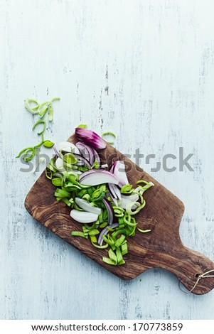 Chopped leek and red onion on a kitchen board - stock photo