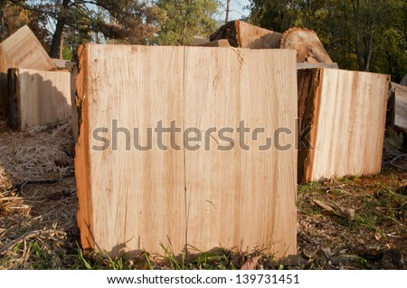 Chopped wood. Biomass. - stock photo