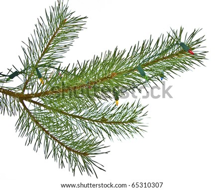 Chrismas ball and lights on pine branch isolated on white