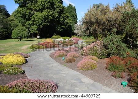 Christchurch Botanic Gardens (New Zealand). Alpine flora. - stock photo
