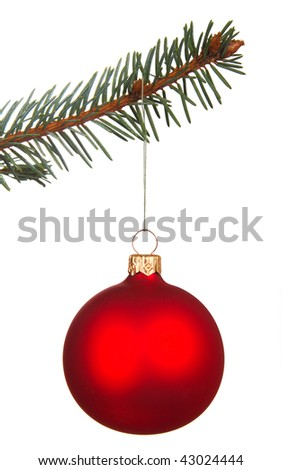 Christmas all on tree isolated on white