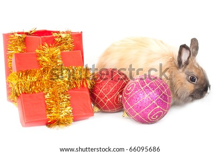 Christmas and new-year decorations.  Rabbit, red giftbox and varicoloured  ball composition on a white background - stock photo