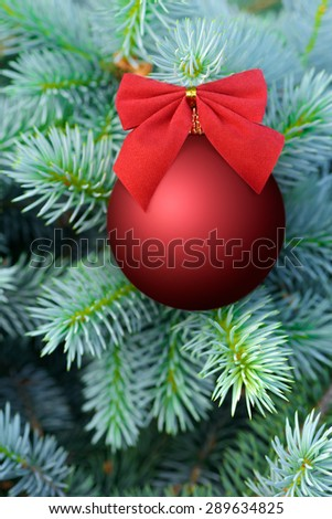 Christmas and New Year: red bauble decorated with bow on a blue fir tree, nice seasonal background - stock photo