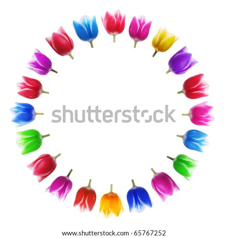 Christmas background from multicolored tulips - stock photo