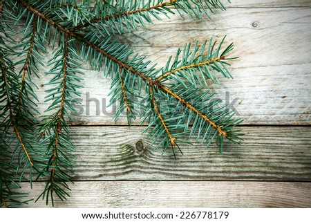 Christmas background with a natural pine branch over weathered rustic wooden boards with woodgrain texture - stock photo