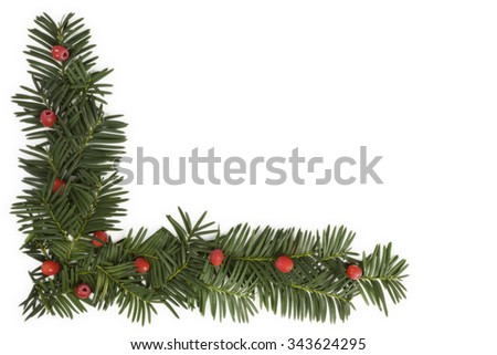 Christmas background with copyspace. Yew twig on white background, top view. - stock photo