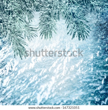 Christmas background with green fir - stock photo
